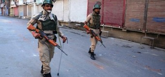 Burhan Wani killing: Amarnath Yatra suspended